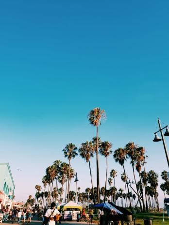 Sunny Venice